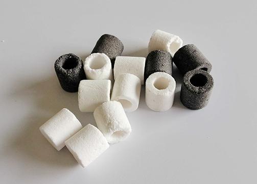 Ceramic Bio Ring